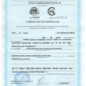 Системы менеджмента ПБиЗ OHSAS18001-2008-2